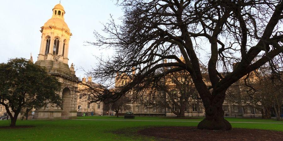 Univesidad reconocida en Irlanda, debido a que tiene varias sedes en varios paises, esta tambien da cursos de ingles